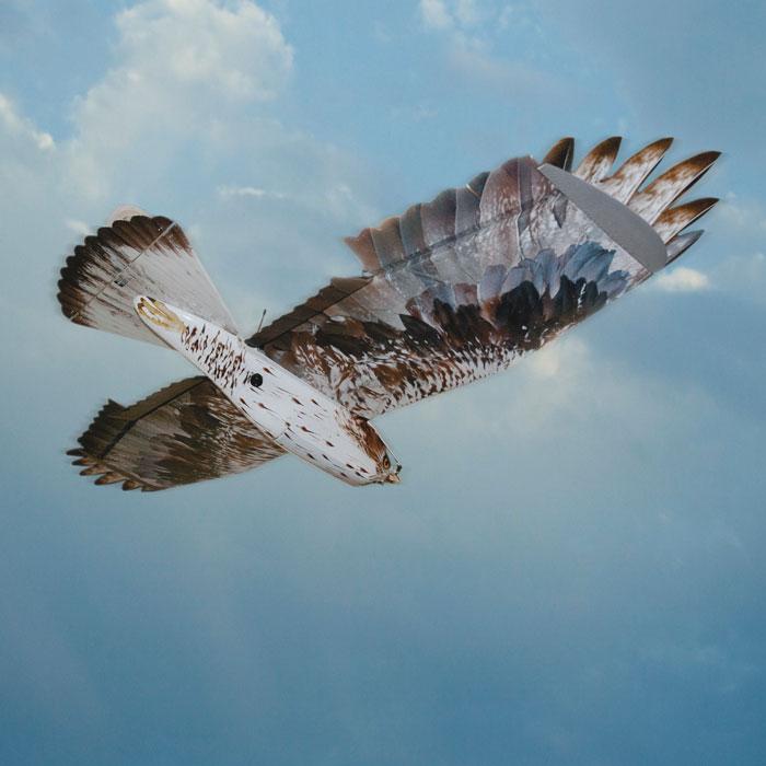 Unmanned Forward Observer Bird camouflage UAV